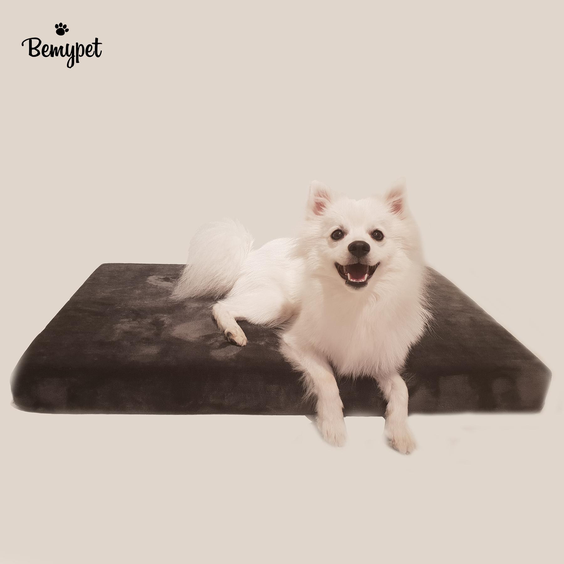 비마이펫 강아지 메모리폼 침대 / 매트리스
